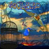 SoulBird by Peter Green