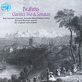 Brahms: Clarinet Trio & Sonatas on Original Instruments by Richard Burnett