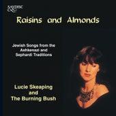 Raisins and Almonds by Burning Bush
