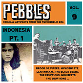 Pebbles Vol. 9, Indonesia Pt. 1, Originals Artifacts from the Psychedelic Era by Various Artists