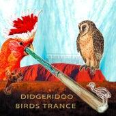 Didgeridoo Birds Dance (Naturally Groovy) by Various Artists