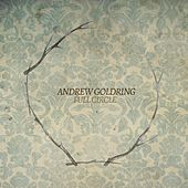 Full Circle by Andrew Goldring