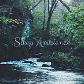 Sleep Ambience by Deep Sleep Relaxation