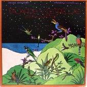 Pájaros y Estrellas by Frank Quintero