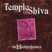 Temple of Shiva by The Barbarellatones