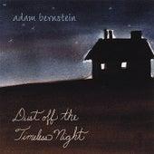 Dust Off the Timeless Night by Adam Bernstein