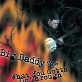 What You Gotta Go Through by Big Daddy 'O'
