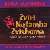 Zviri Kufamba Zvishoma by Boka Marimba
