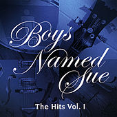 The Hits Vol 1 by Boys Named Sue