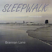 Sleepwalk - Somnambula by Brannan Lane