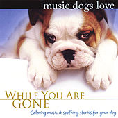 Music Dogs Love: While You Are Gone by Bradley Joseph