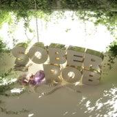 Enlighten by Sober Rob
