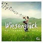 Wiesenglück: Psy Trance Goa 2016, Vol. 2 by Various Artists