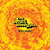 Open Doors by Baby Woodrose