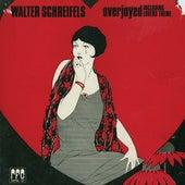 Overjoyed by Walter Schreifels