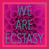 We Are Ecstasy, Vol. 1 - Selection of House and Tech House by Various Artists