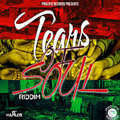 Tears of Soul Riddim by Various Artists