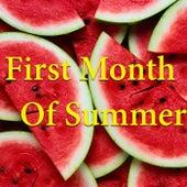 First Month Of Summer von Various Artists