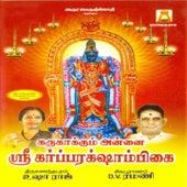 Karukaakkum Annai Sri Garbarakshambigai by D.V.Ramani