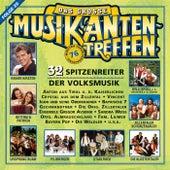Das große Musikantentreffen - Folge 20 by Various Artists