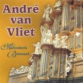 Martinikerk, Bolswaard by André van Vliet