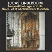 Bespeelt de Orgel van St. Michaëlskerk, Zwolle by Lucas Lindeboom