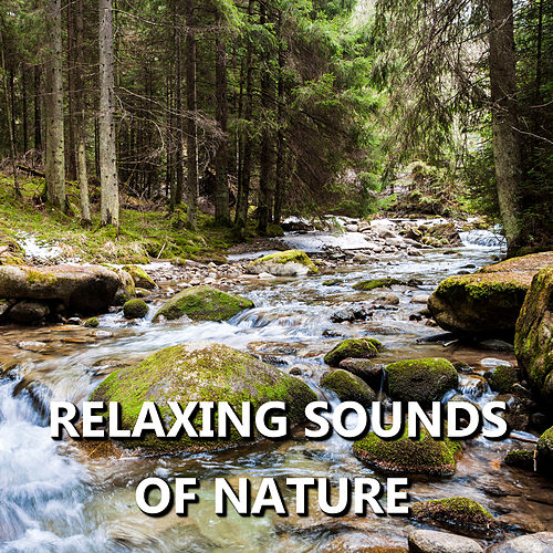 Relaxing Sounds of Nature by Sounds Of Nature