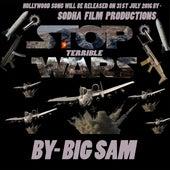 Stop Terrible War by Big Sam
