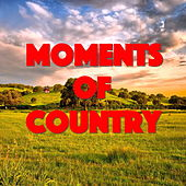 Moments Of Country von Various Artists