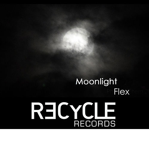 Moonlight Forest by Flex