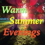 Warm Summer Evenings von Various Artists