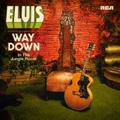 Way Down in the Jungle Room von Elvis Presley