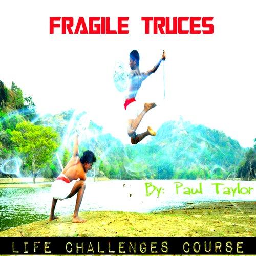 Fragile Truces by Paul Taylor