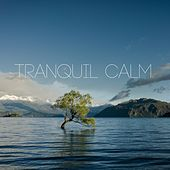 Tranquil Calm by Meditation Music Zone