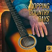 Popping Country Days, Vol. 1 by Various Artists