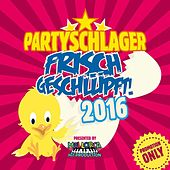 Partyschlager - frisch geschlüpft! 2016 by Various Artists
