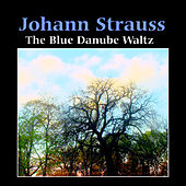 Strauss: The Blue Danube Waltz by Nikolai Goranov