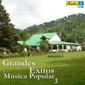 Grandes Éxitos de la Música Popular, Vol. 3 by Various Artists