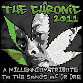 The Chronic 2011: A Tribute To The Songs Of Dr. Dre by Various Artists