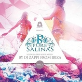 Pure Salinas, Vol. 7 (Compiled by DJ Zappi) by Various Artists