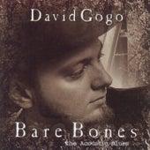 Bare Bones by David Gogo
