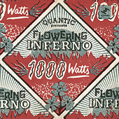 1000 Watts by Quantic