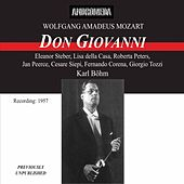 Mozart: Don Giovanni, K527 by Various Artists