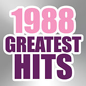 1988 Greatest Hits by The Magic Time Travelers
