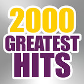 2000 Greatest Hits by The Magic Time Travelers