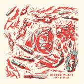 Hiding Place by Josh Garrels