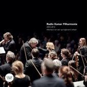 Afscheid Van Een Springlevend Orkest by Various Artists
