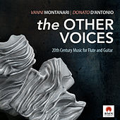 The Other Voices by Vanni Montanari