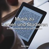 Musik zu Lernen und Studieren: Entspannende Musik für das Studium by Various Artists