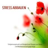 Stress Abbauen - Entspannungsmusik und Klangkulissen Therapie zum Ruhen und Meditationsmusik gegen Angst by Entspannungsmusik Akademie